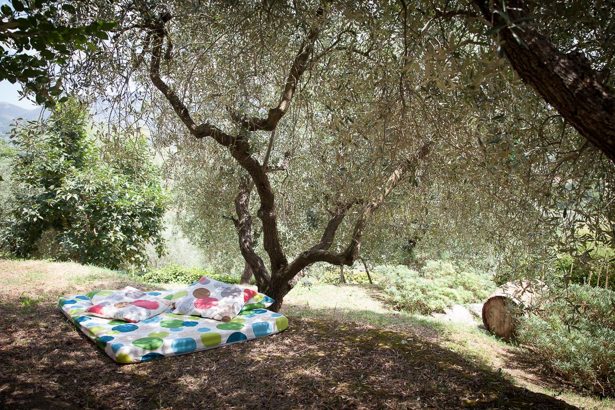 Relax all'ombra degli olivi